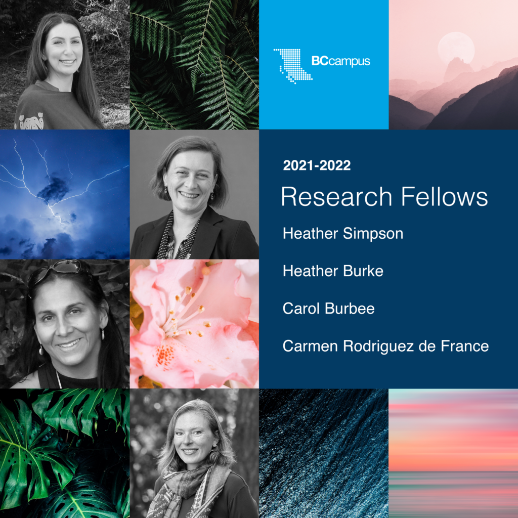 A graphic with various squares shows black and white photos of research fellows mixed with colourful images of nature.